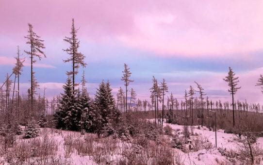 Hory s priateľmi - Veľká Studená dolina v zime